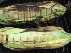 Grilling Corn on the Cob in Husks